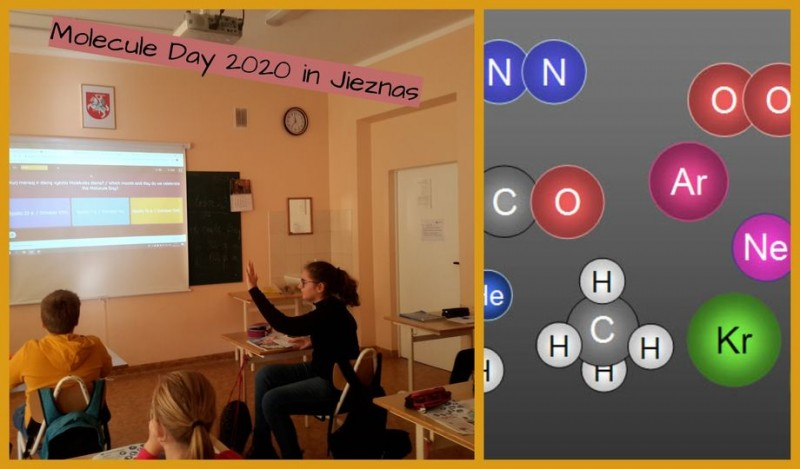 Molekulės diena – 2020
